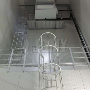 Double cage ladder with guard rails